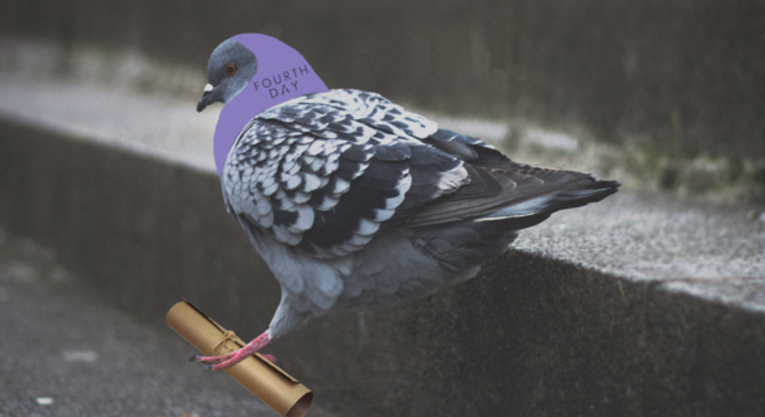 FOURTH DAY RESORTS TO PIGEON POST TO DELIVER PRESS ...
